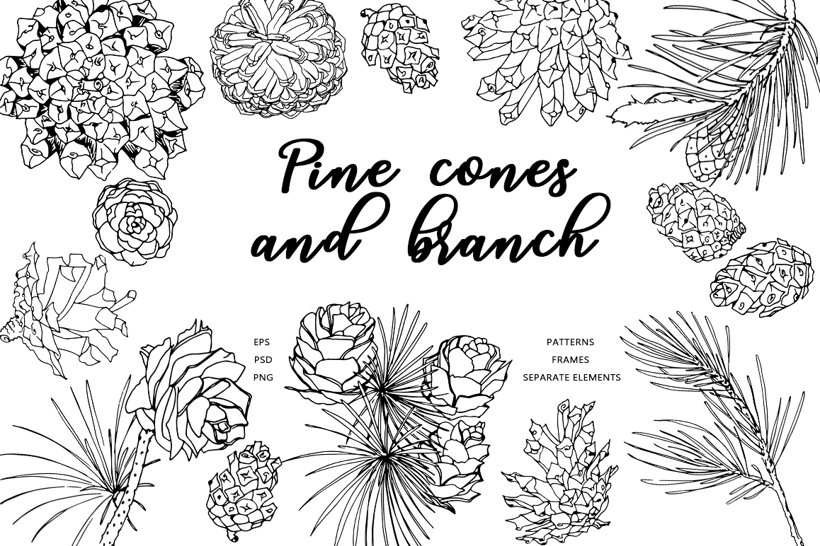 Pine cones and branch example image 1