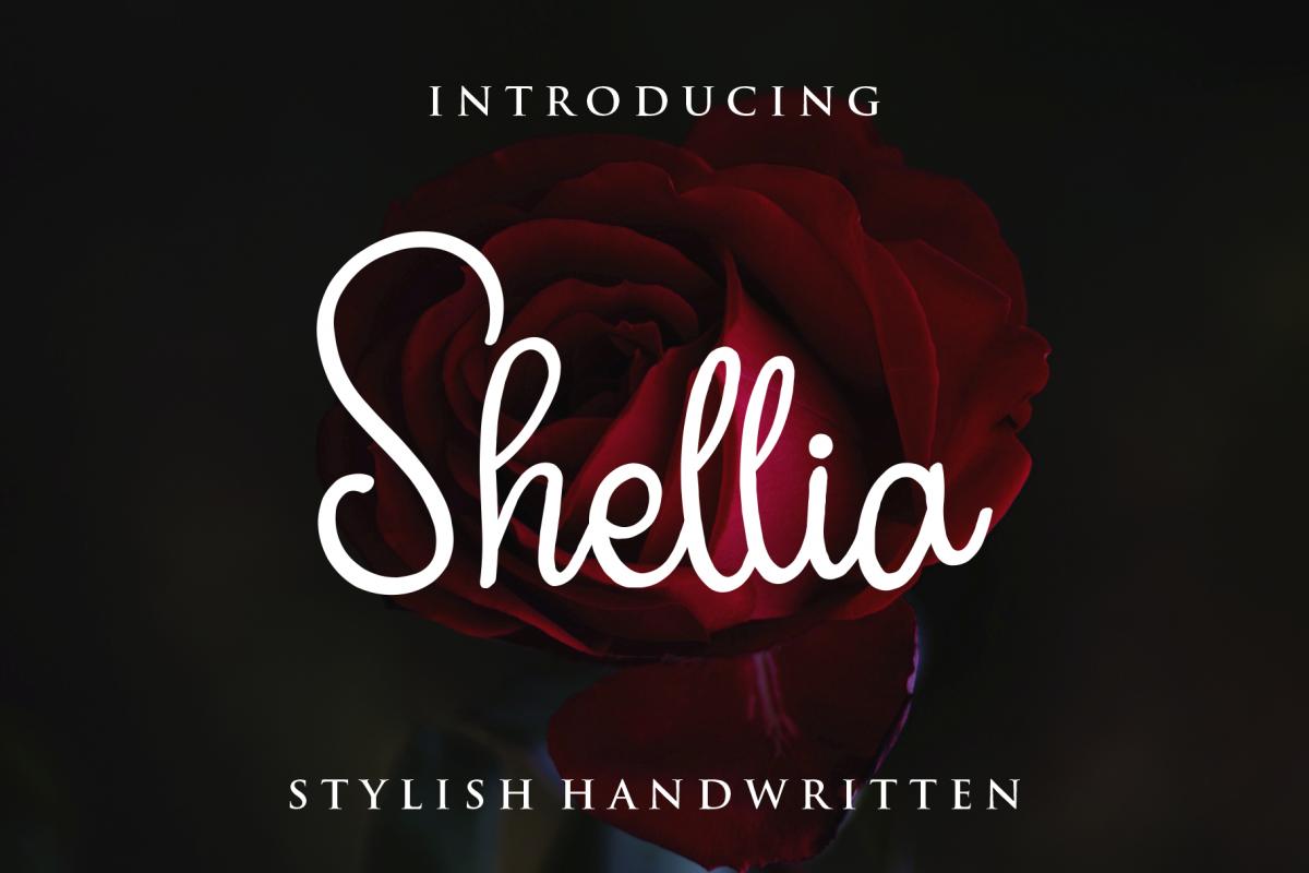 Shellia Script example image 1