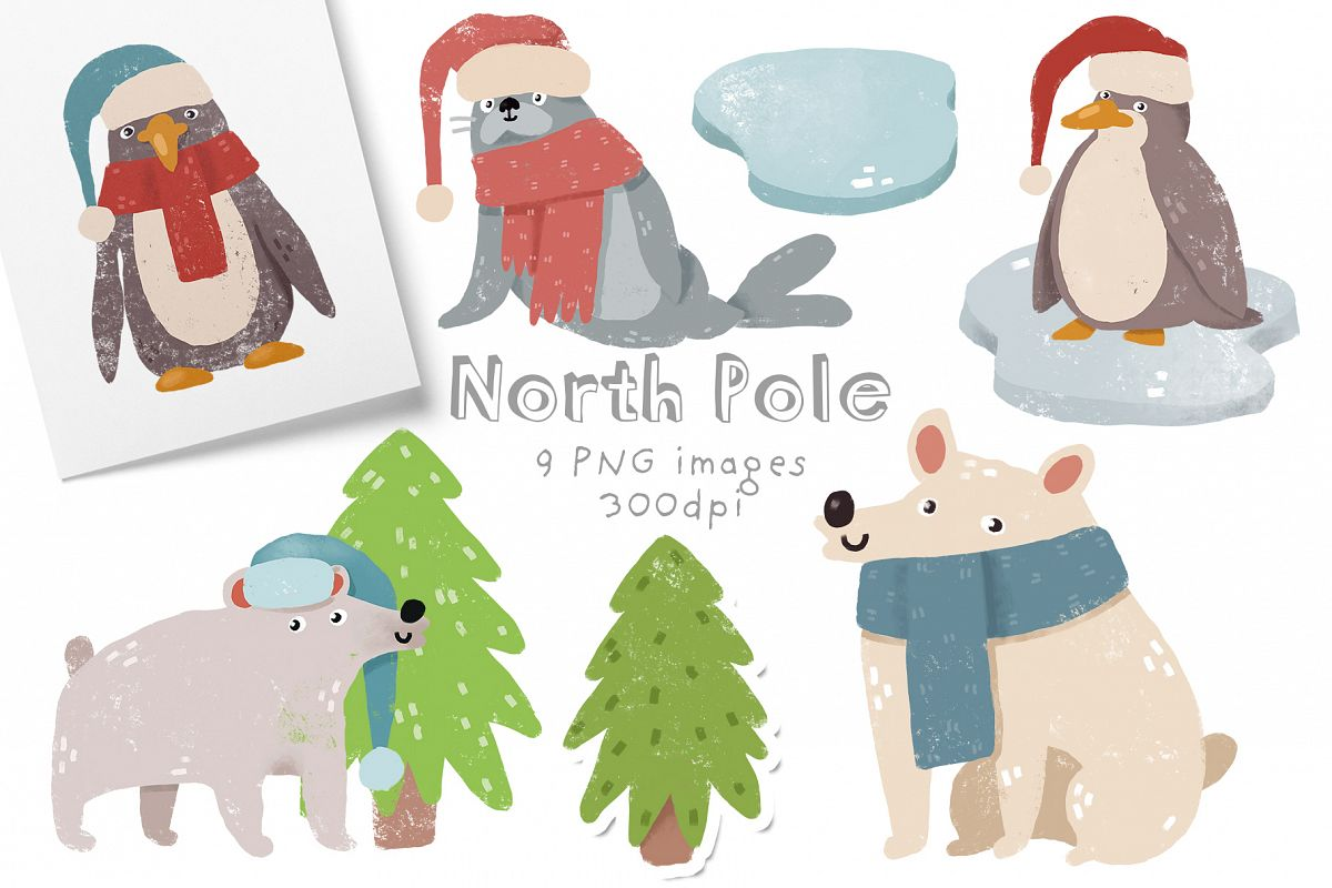 North Pole example image 1