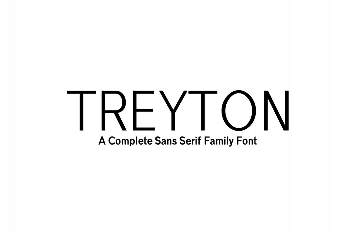 Treyton Sans Serif Font Family example image 1