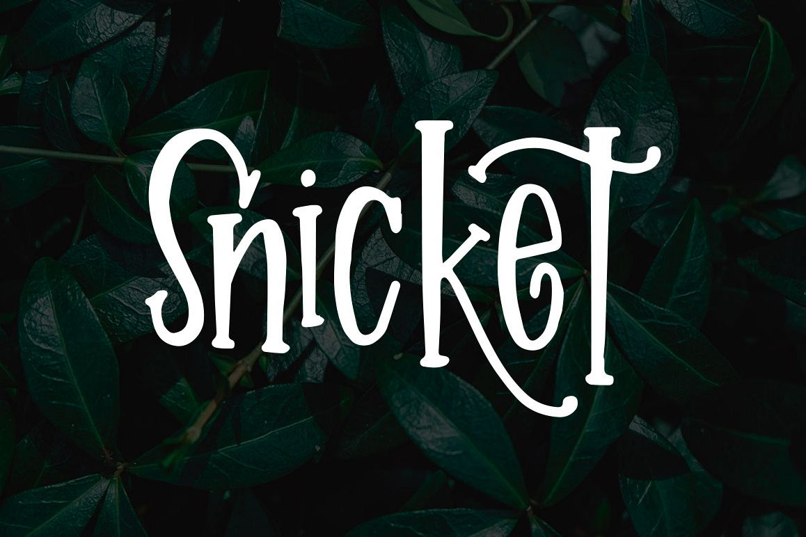 Snicket example image 1