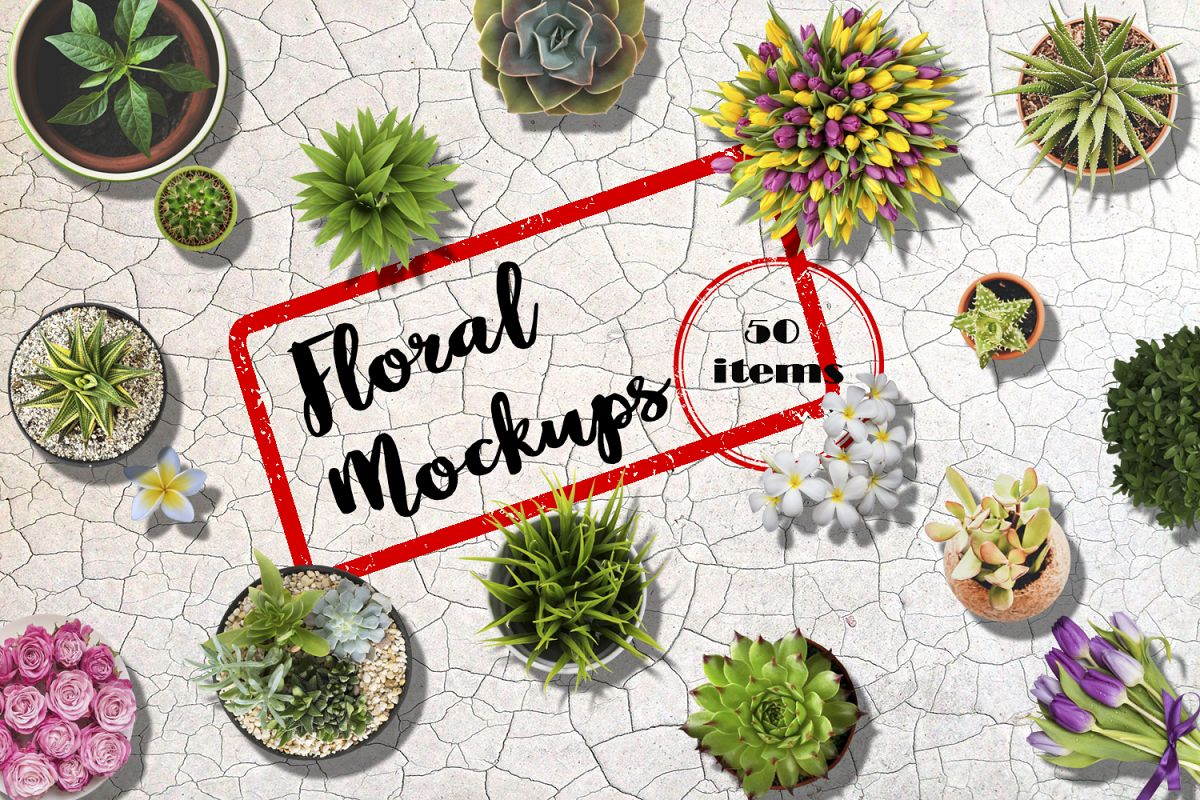 Floral Mockups. Flowers in pots and not only example image 1