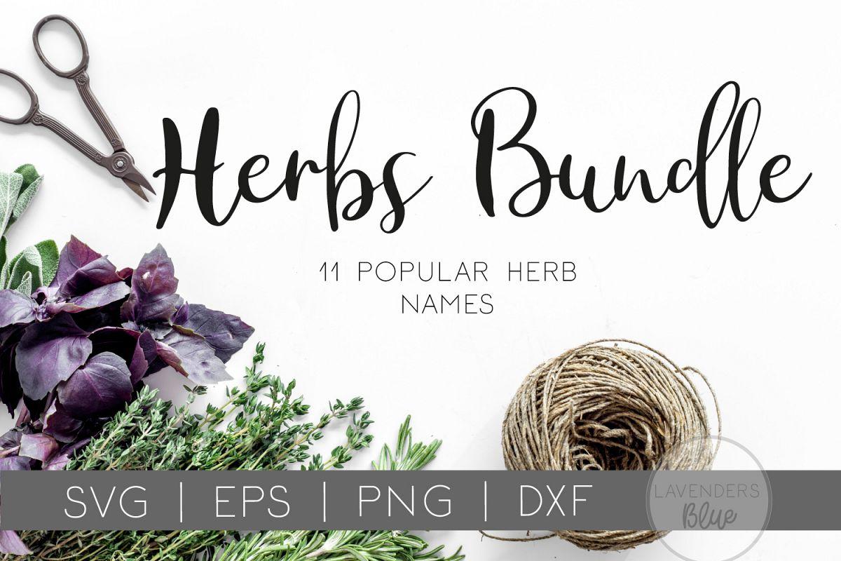 Herb Bundle   Herb Name Label SVGs   11 Herb names example image 1