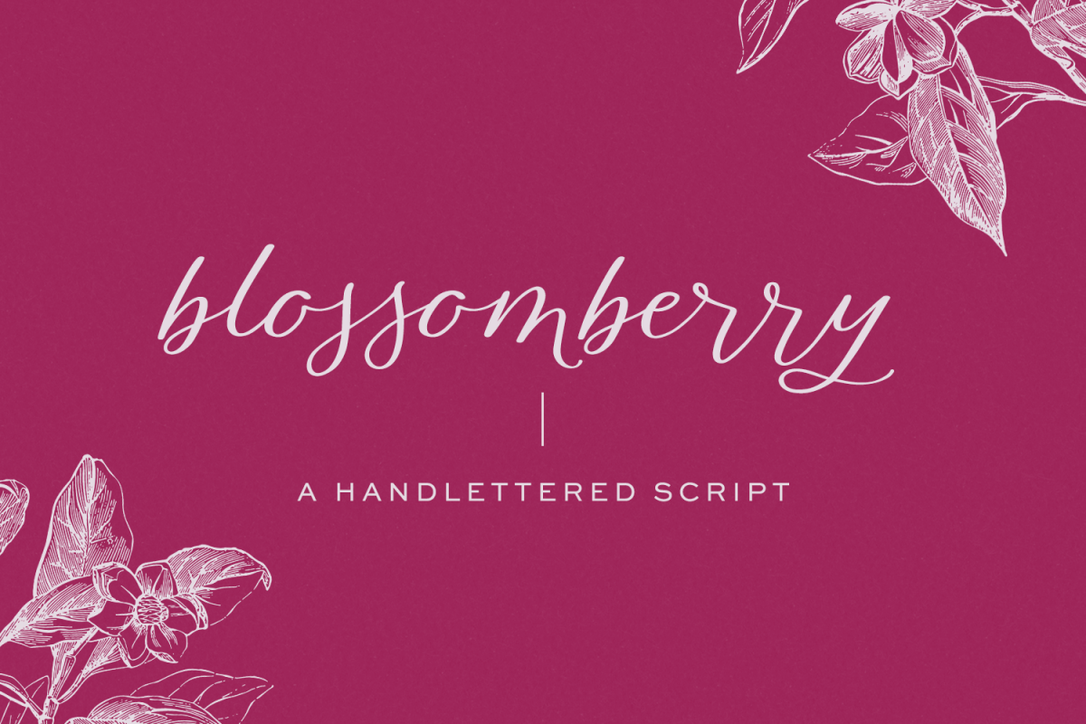 Blossomberry Script Font example image 1