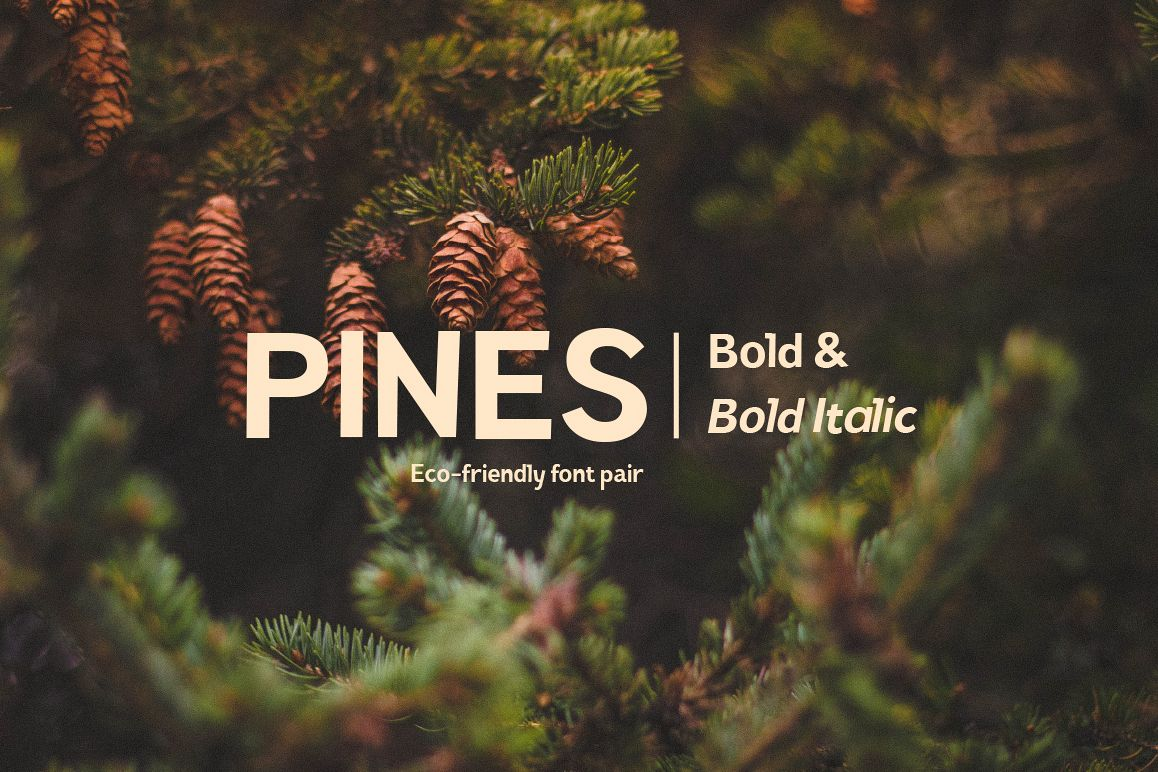 Pines Bold & Pines Bold Italic example image 1