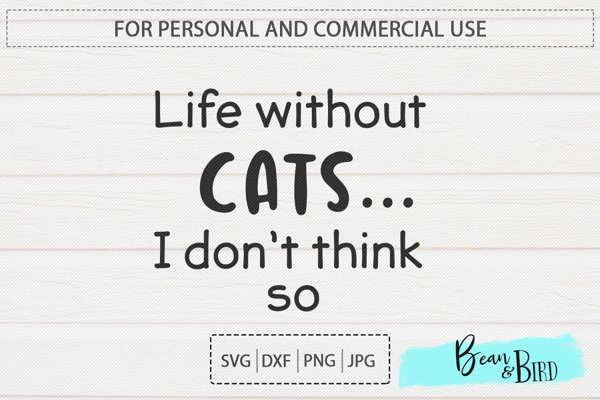 Life without Cats... example image 1