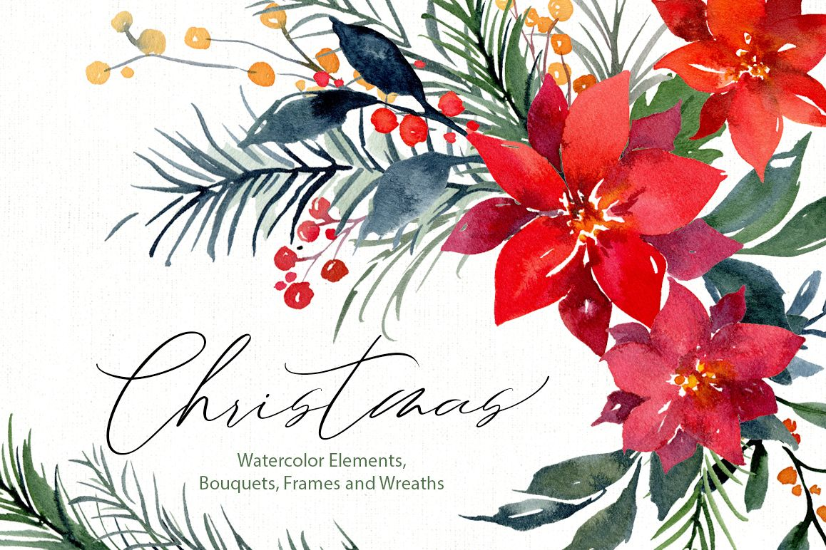 Watercolor Christmas Xmas Floral Florals Poinsettia Fir Pine