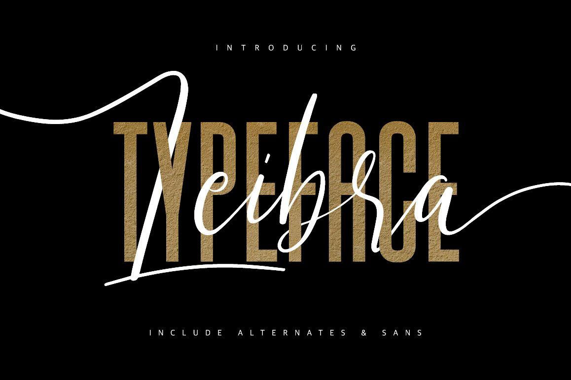 Leibra Typeface example image 1