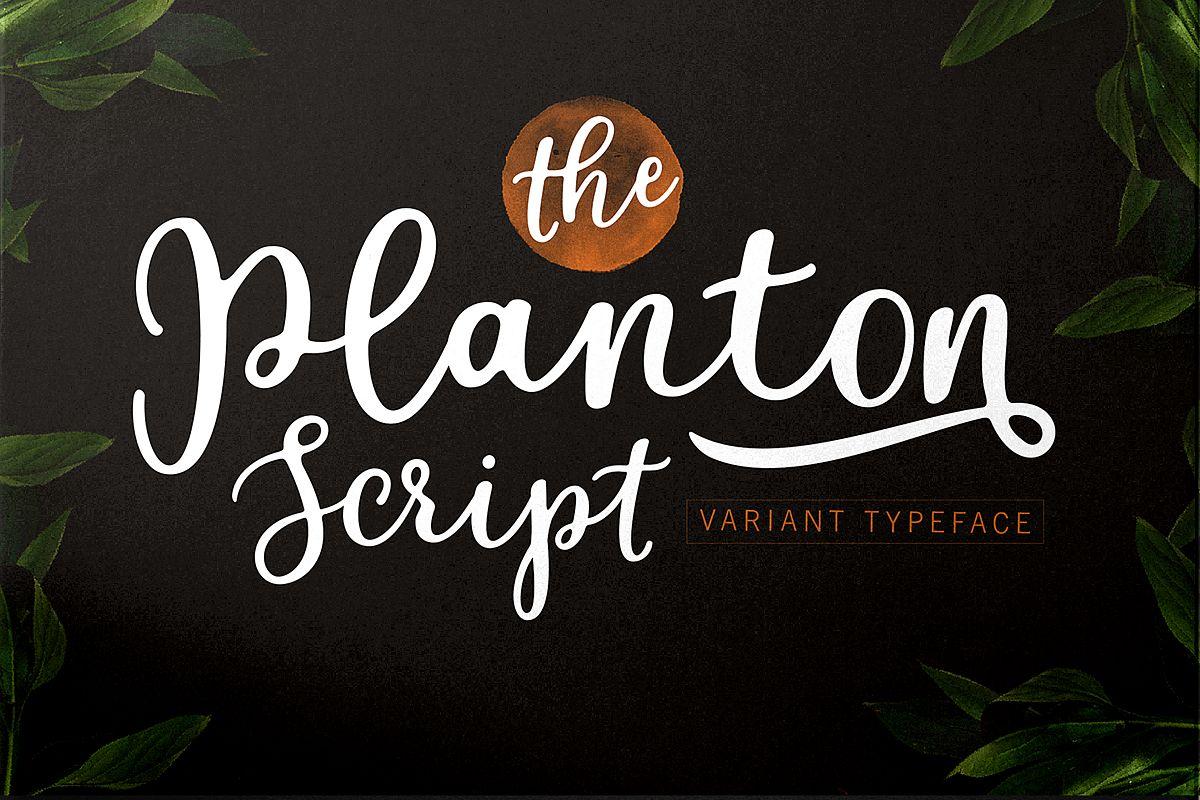 Planton Script example image 1