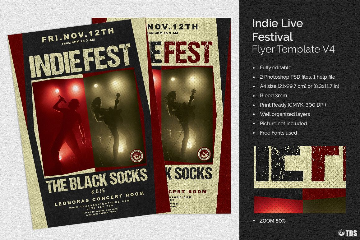 Indie Live Festival Flyer Template V4 example image 1