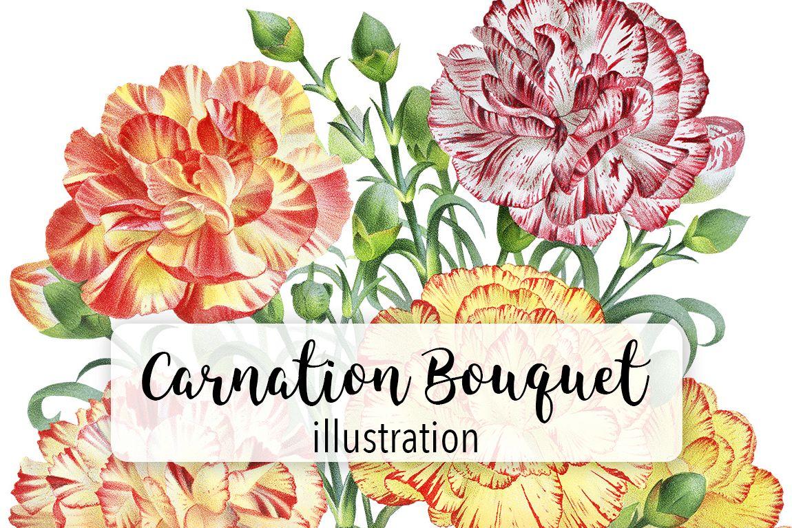 Florals - Vintage Carnation Flower Bouq   Design Bundles