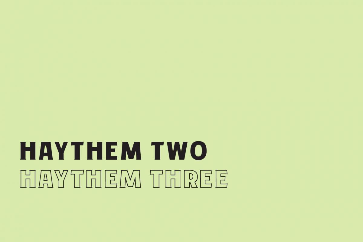 Haythem mini example image 1