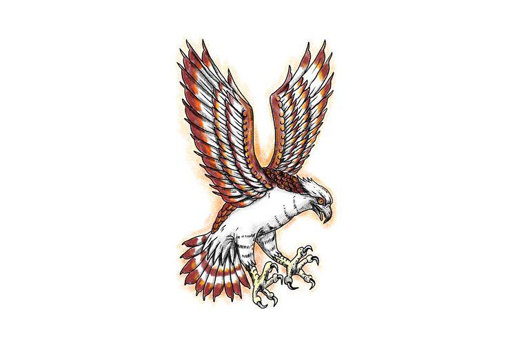 Osprey Sea Hawk Swooping Tattoo example image 1