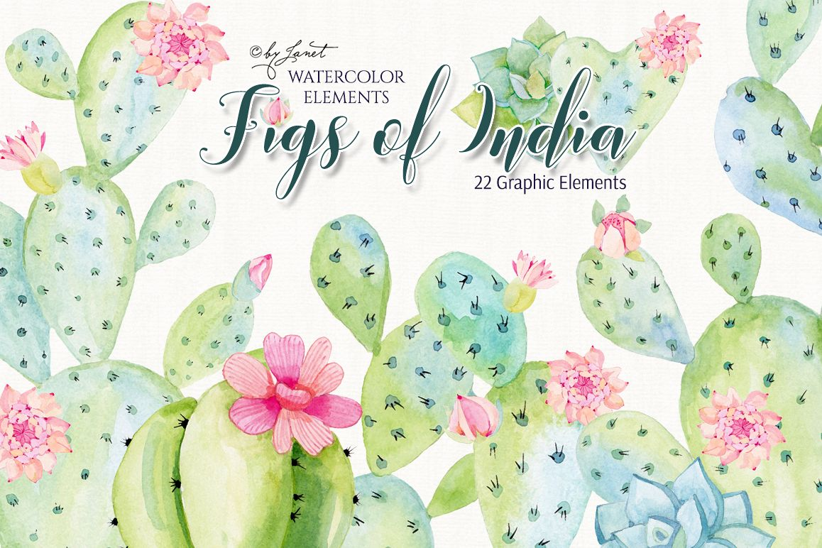 Figs of India Watercolor example image 1