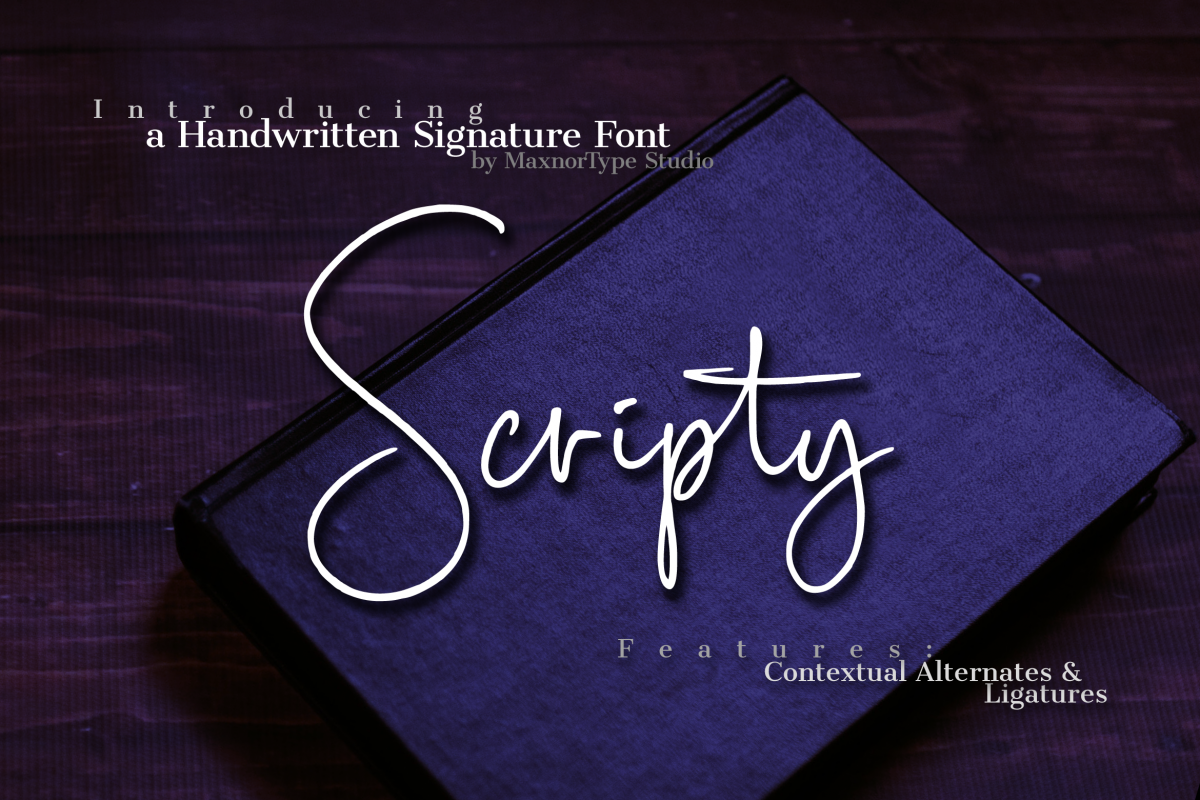 Scripty Handwritten Signature Font example image 1