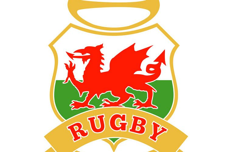 rugby ball wales red welsh dragon shield example image 1