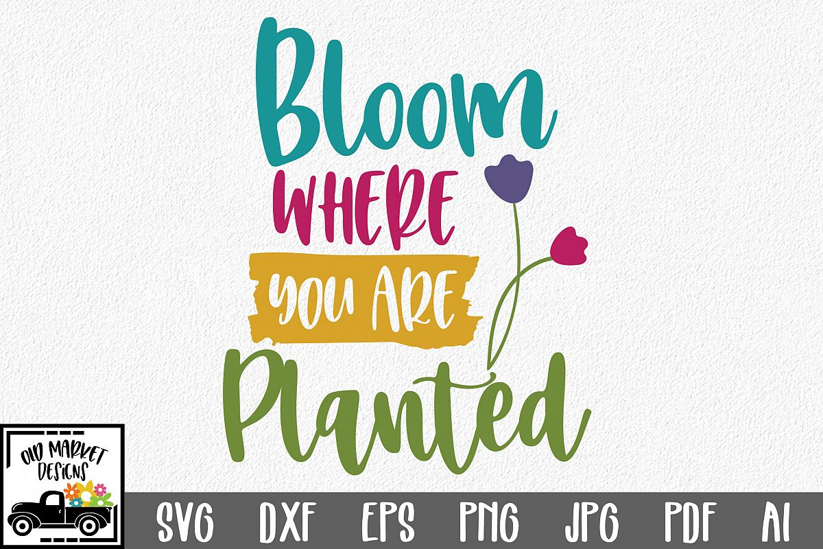Bloom Where You Are Planted SVG Cut File - Spring SVG DXF example image 1