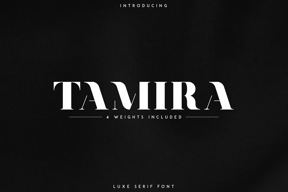 Tamira - Luxe Serif Typeface example image 1