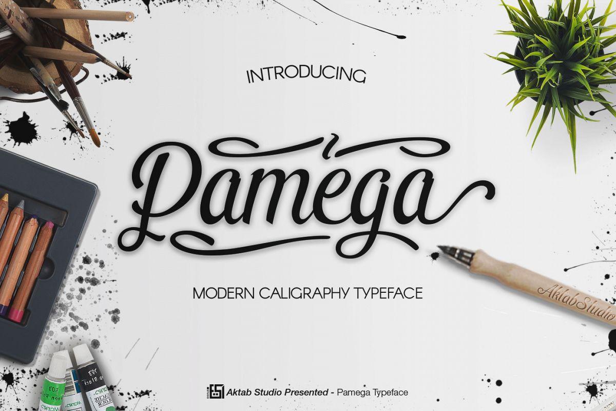 Pamega Script Font example image 1