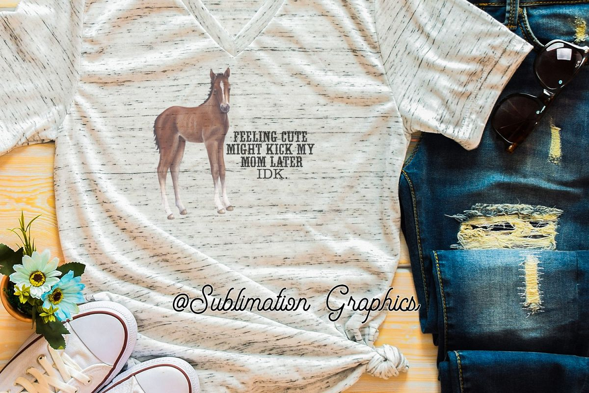 Feeling Cute Foal Sublimation Digital Download example image 1