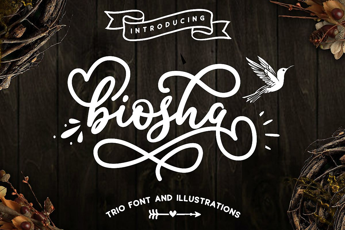 Biosha Font trio and extras example image 1