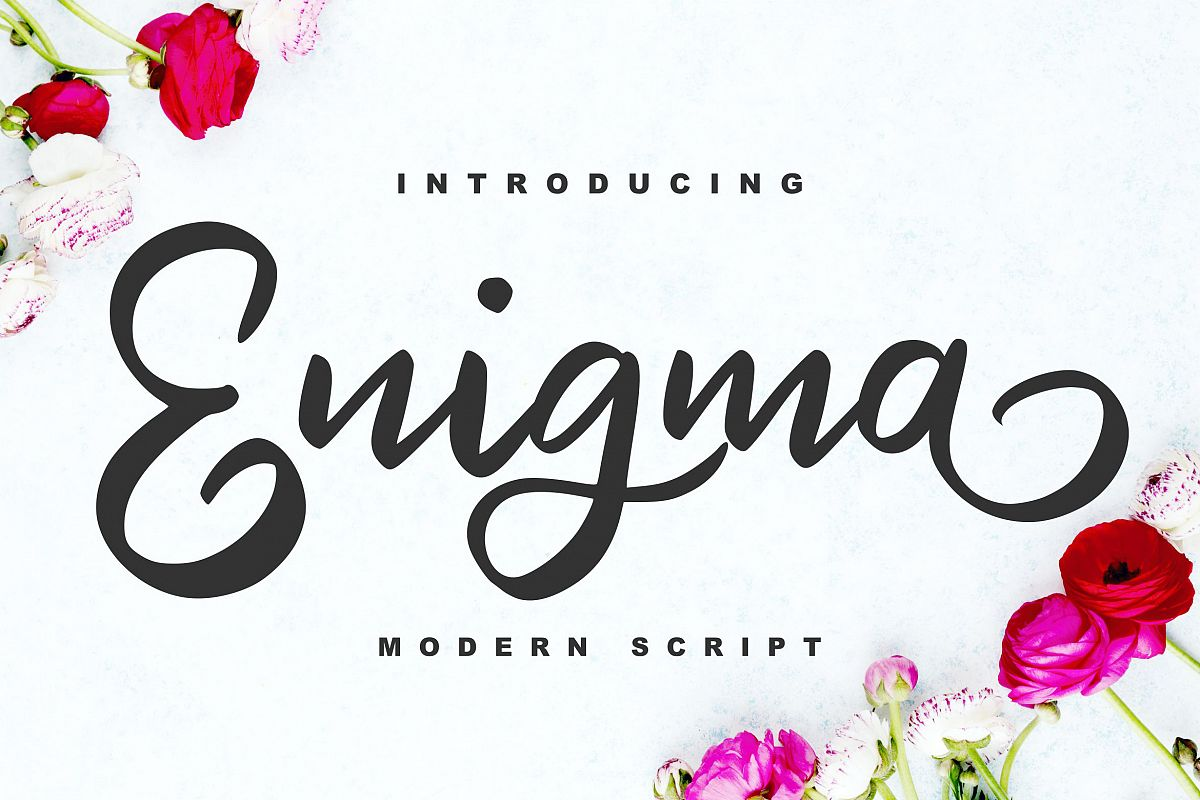Enigma | Modern Script Font example image 1
