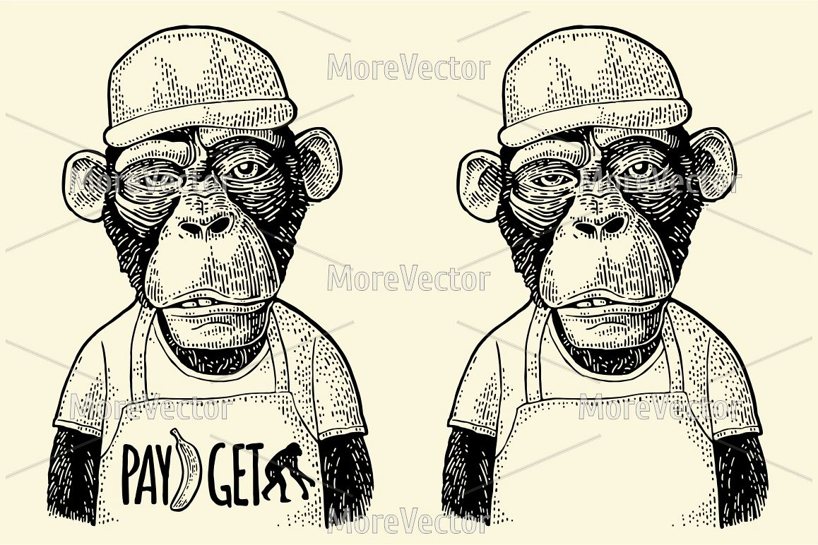 Monkeys fast food worker serving fast food dressed in cap and t-shirt. engraving example image 1