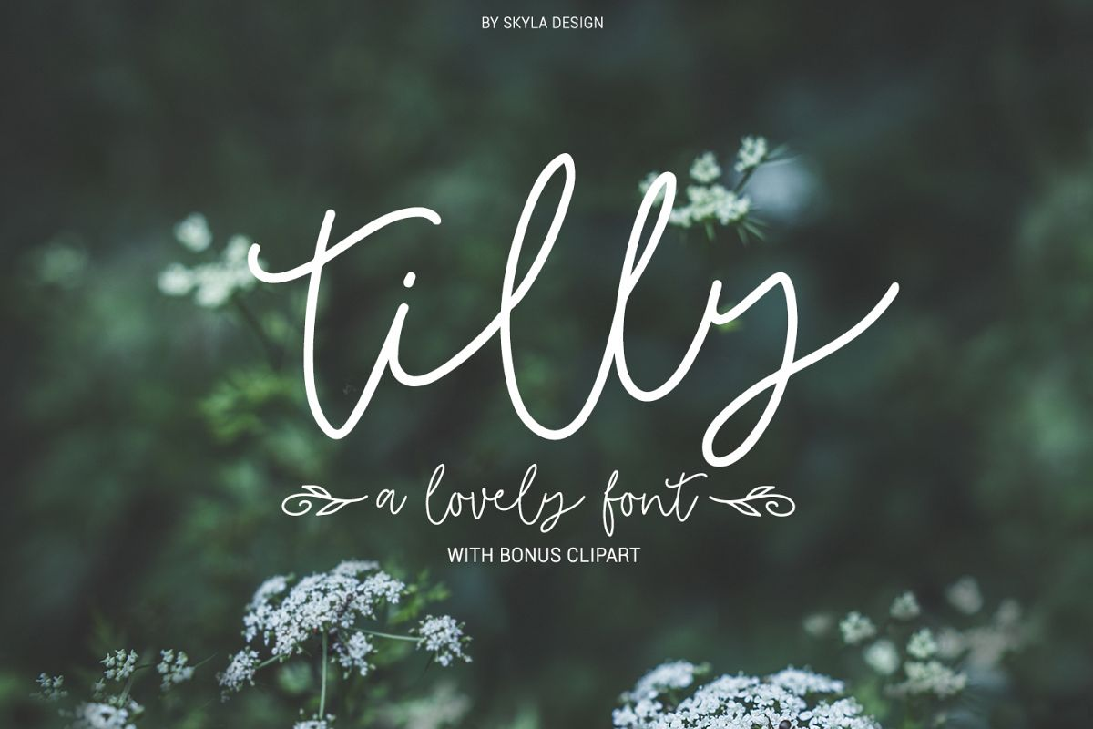 Tilly, a lovely, romantic, wedding font with bonus clipart example image 1