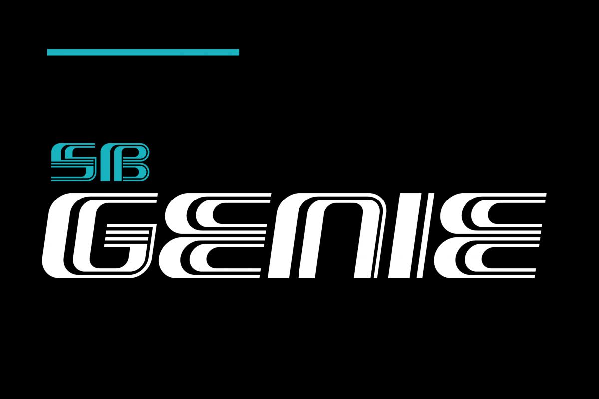 SB Genie example image 1