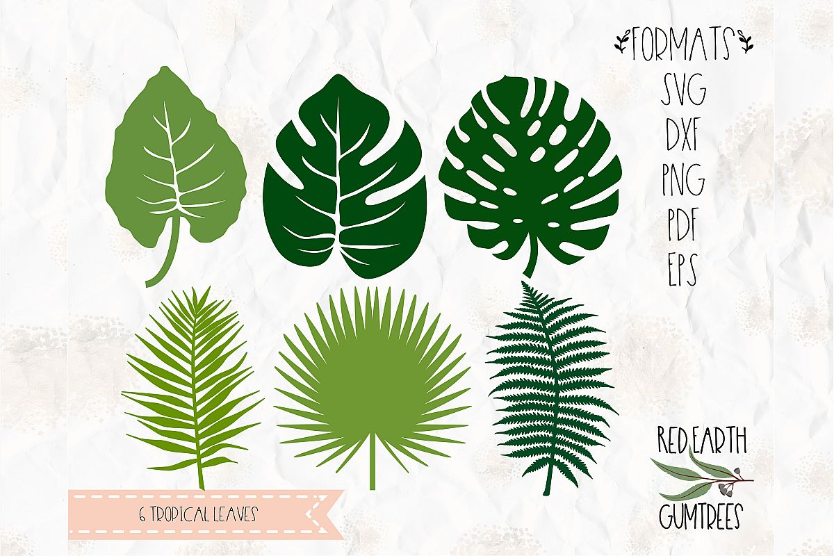 Tropical Plants Summer Plants In Svg Eps Pdf Dxf Png
