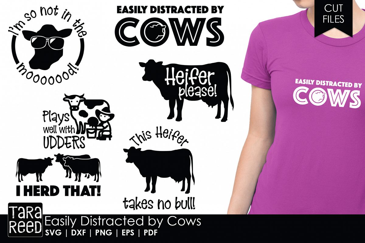 Easily Distracted by Cows - Cow SVG and Cut Files example image 1