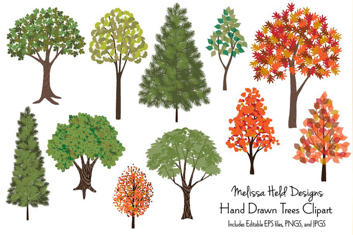 Hand Drawn Seasonal Trees Clipart example image 1