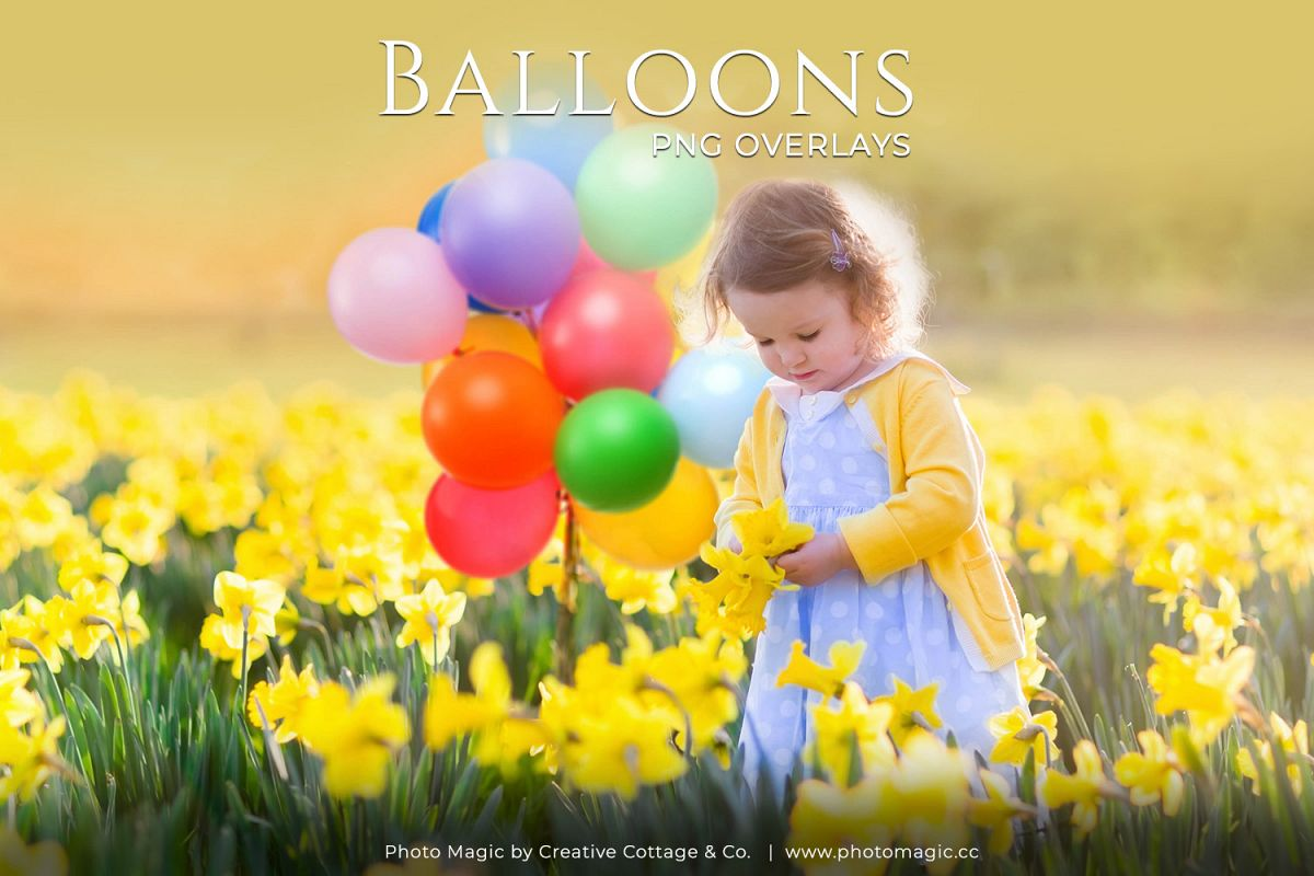 Fun Balloons Photo Overlays example image 1