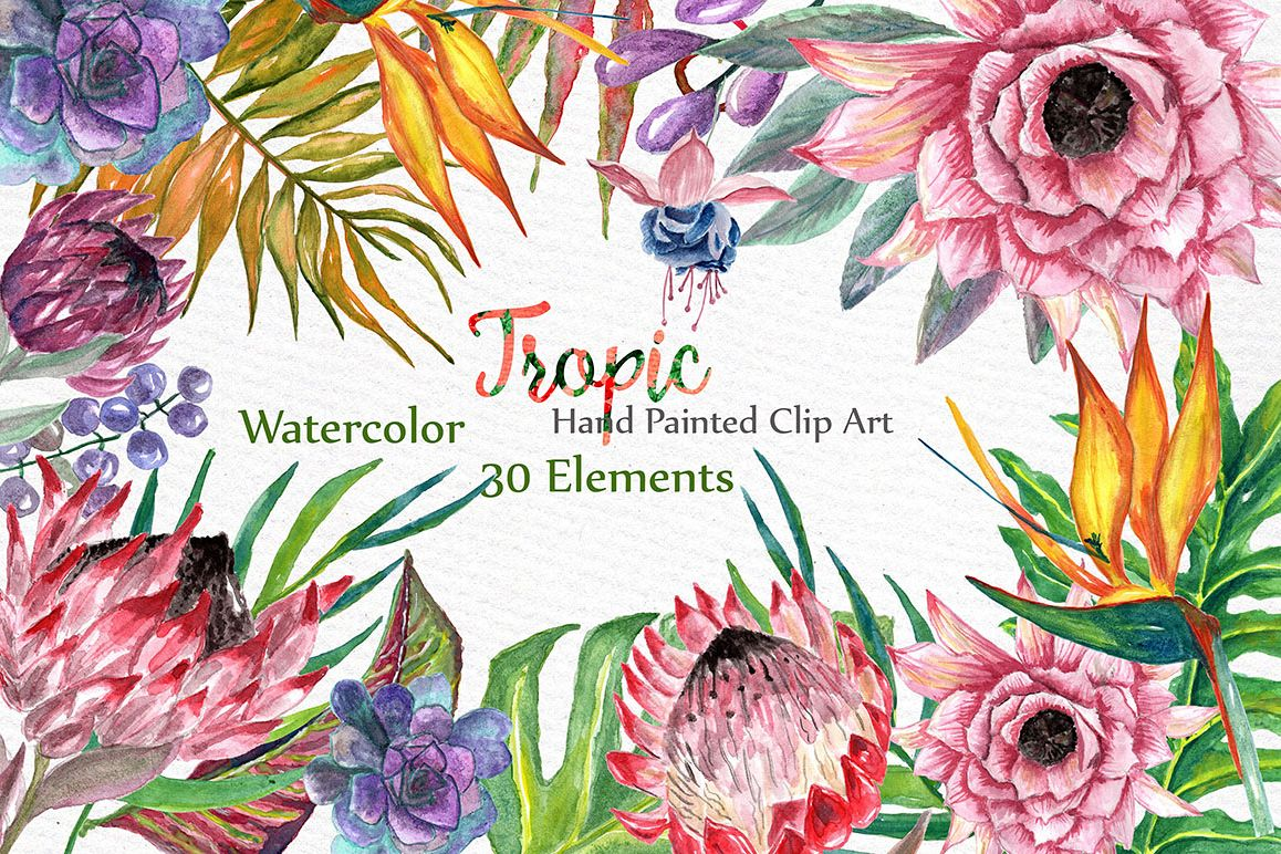 Watercolor Tropic clipart example image 1