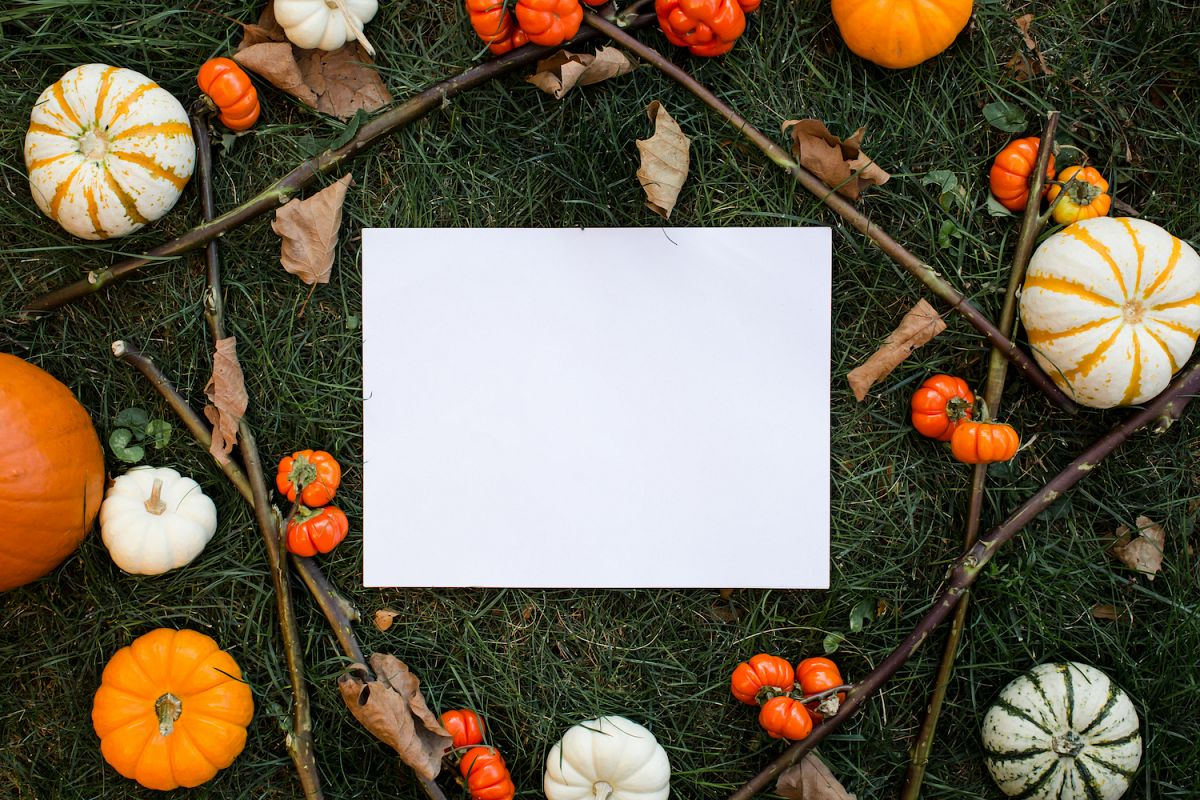 Autumn mockup with a lot of different pumpkins example image 1