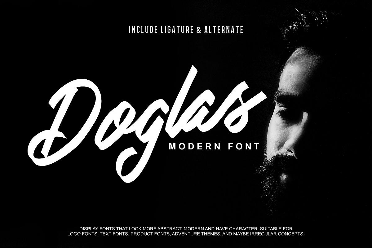 Doglas   Modern Script Font example image 1