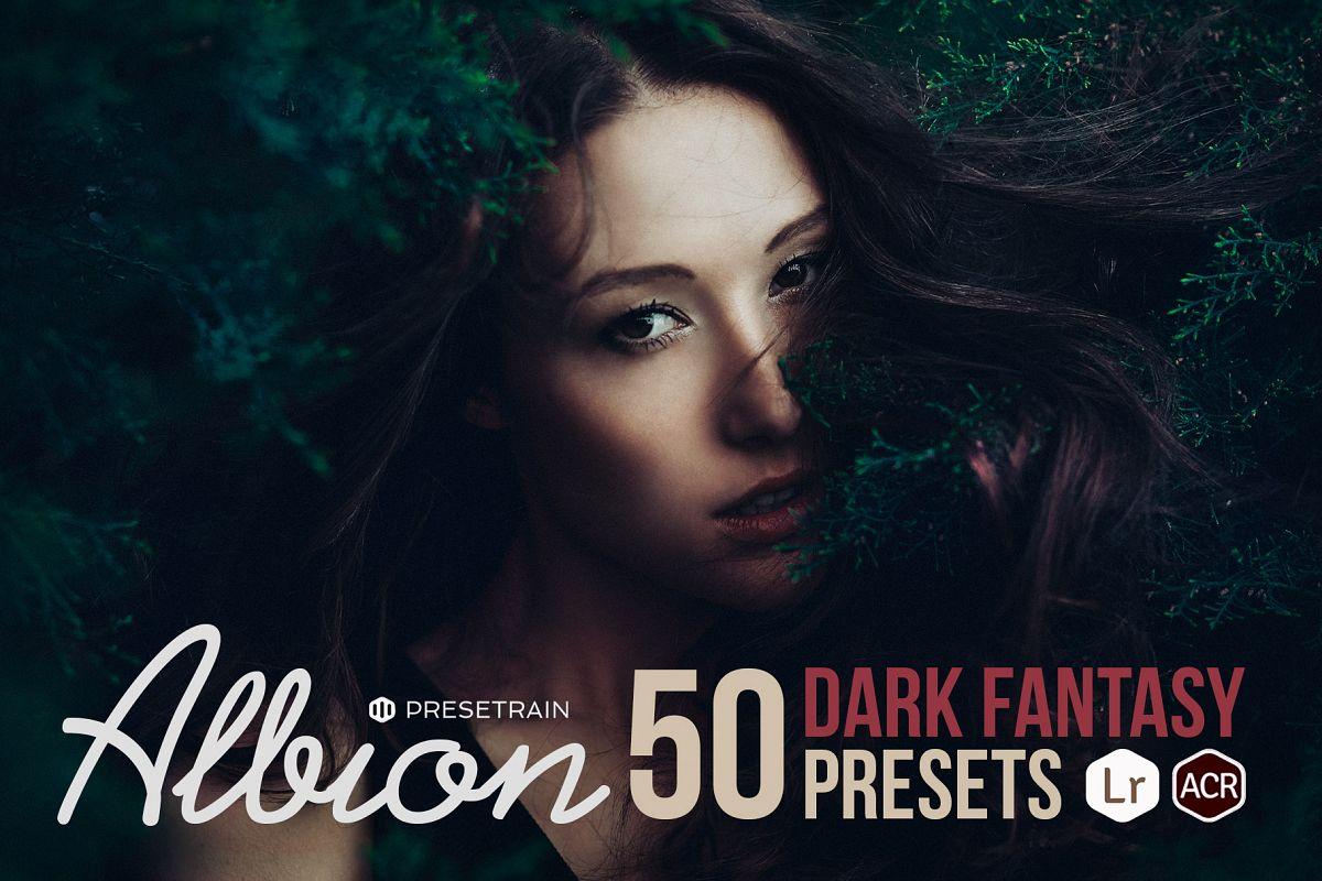 Albion Dark Fantasy Presets example image 1