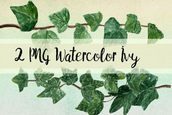 Watercolor Ivy Clip Art - 2 PNG example image 1