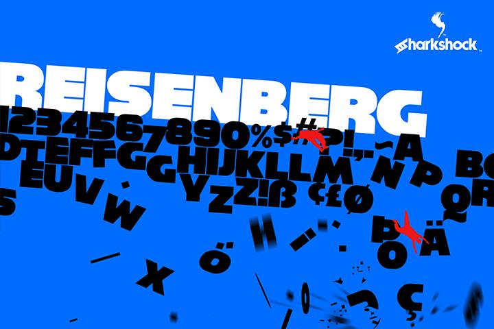 Reisenberg example image 1