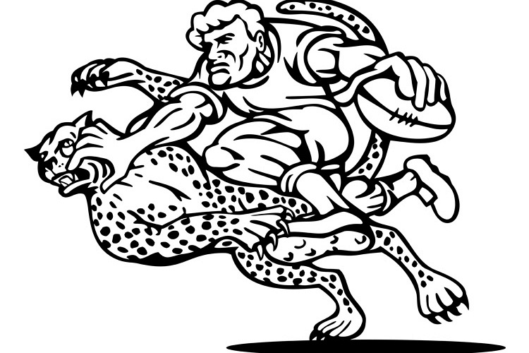 rugby player tackled by cheetah example image 1