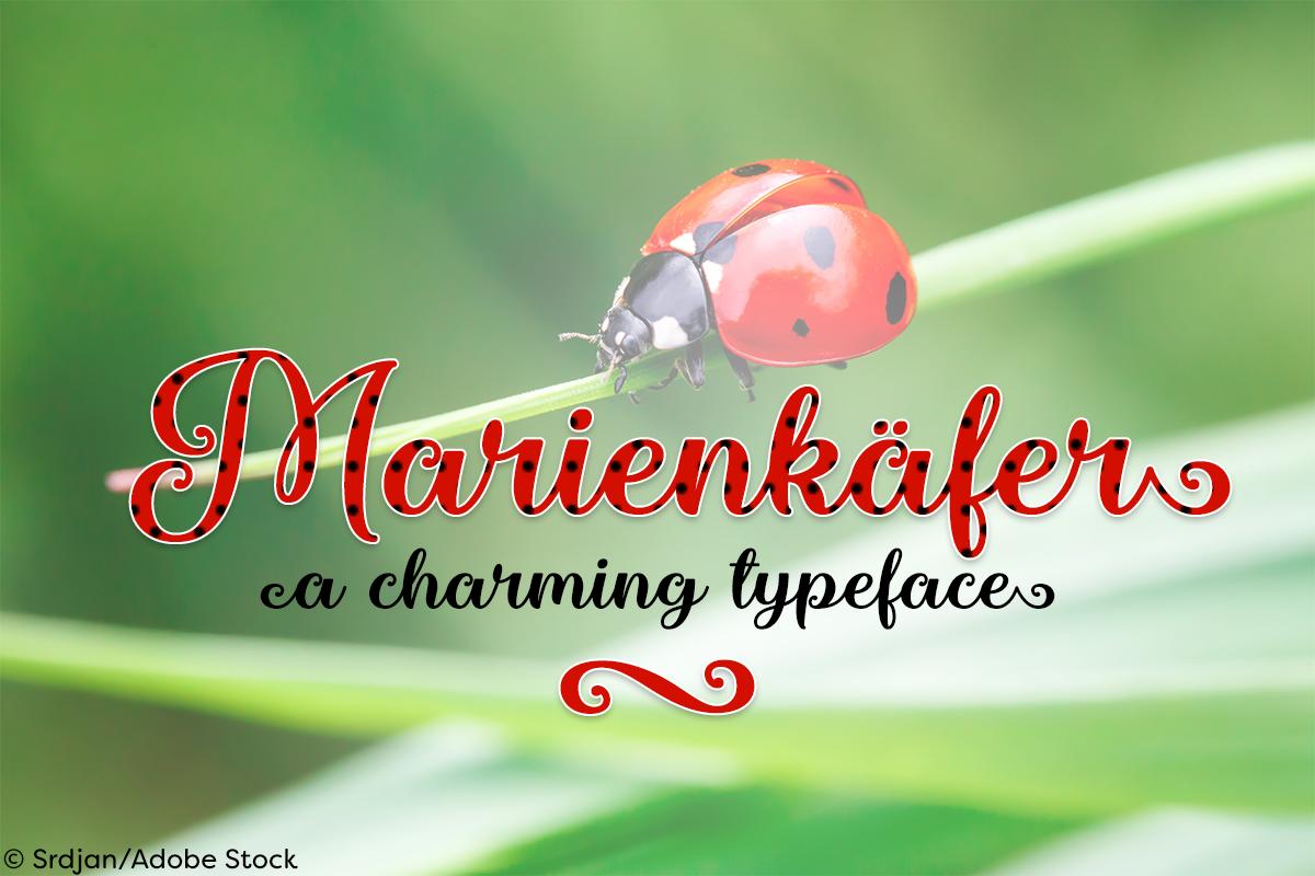 Marienkaefer example image 1