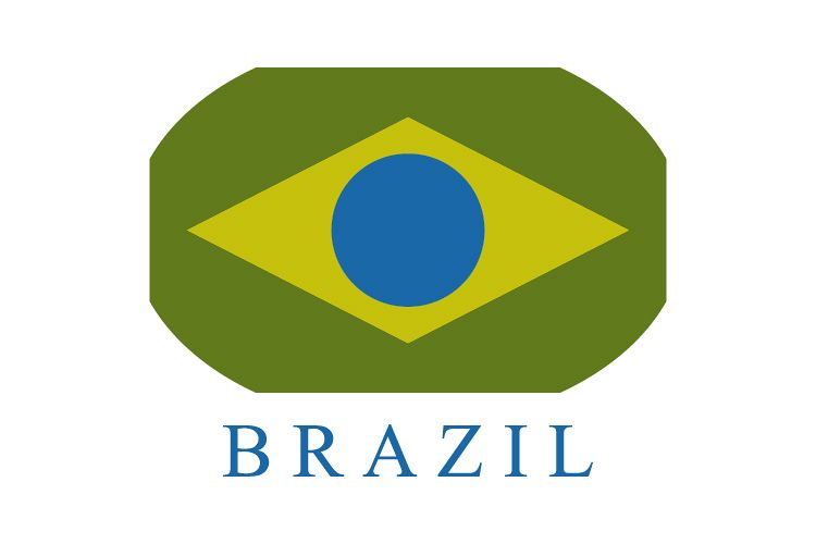 Brazil flag example image 1