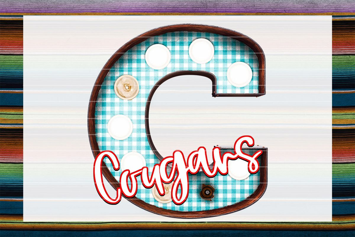 Cougars Gingham Marquee Sublimation PNG example image 1