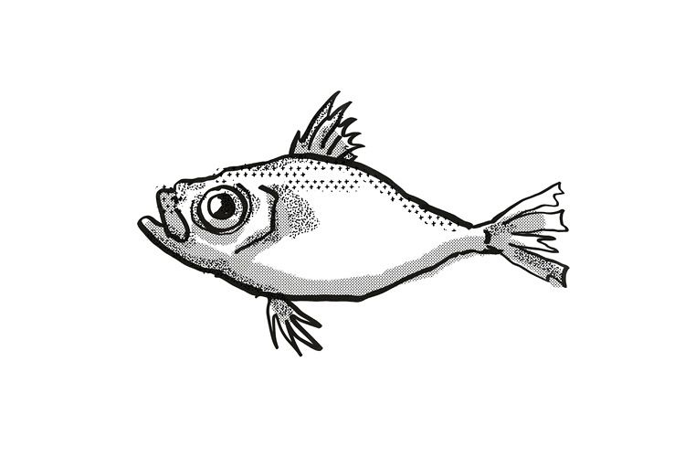 Japanese Dory Fish Cartoon Retro Drawing example image 1