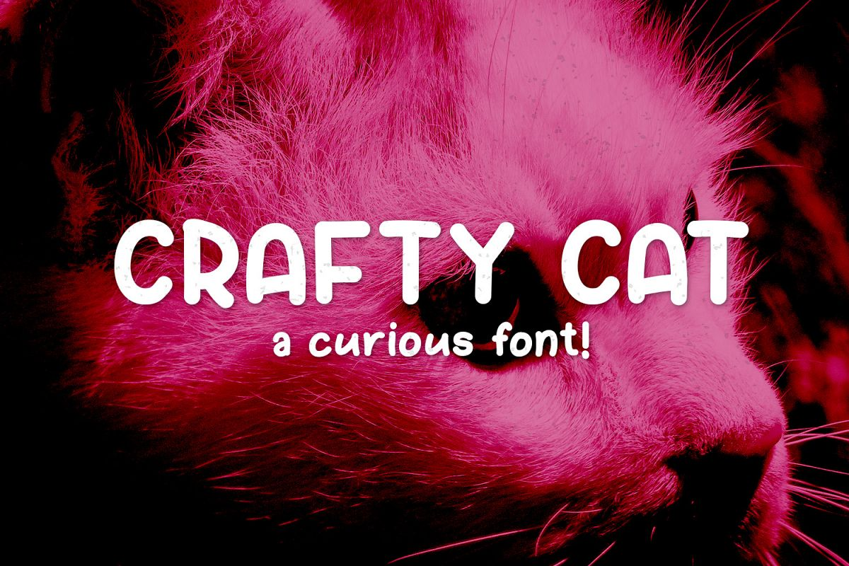 Crafty Cat example image 1
