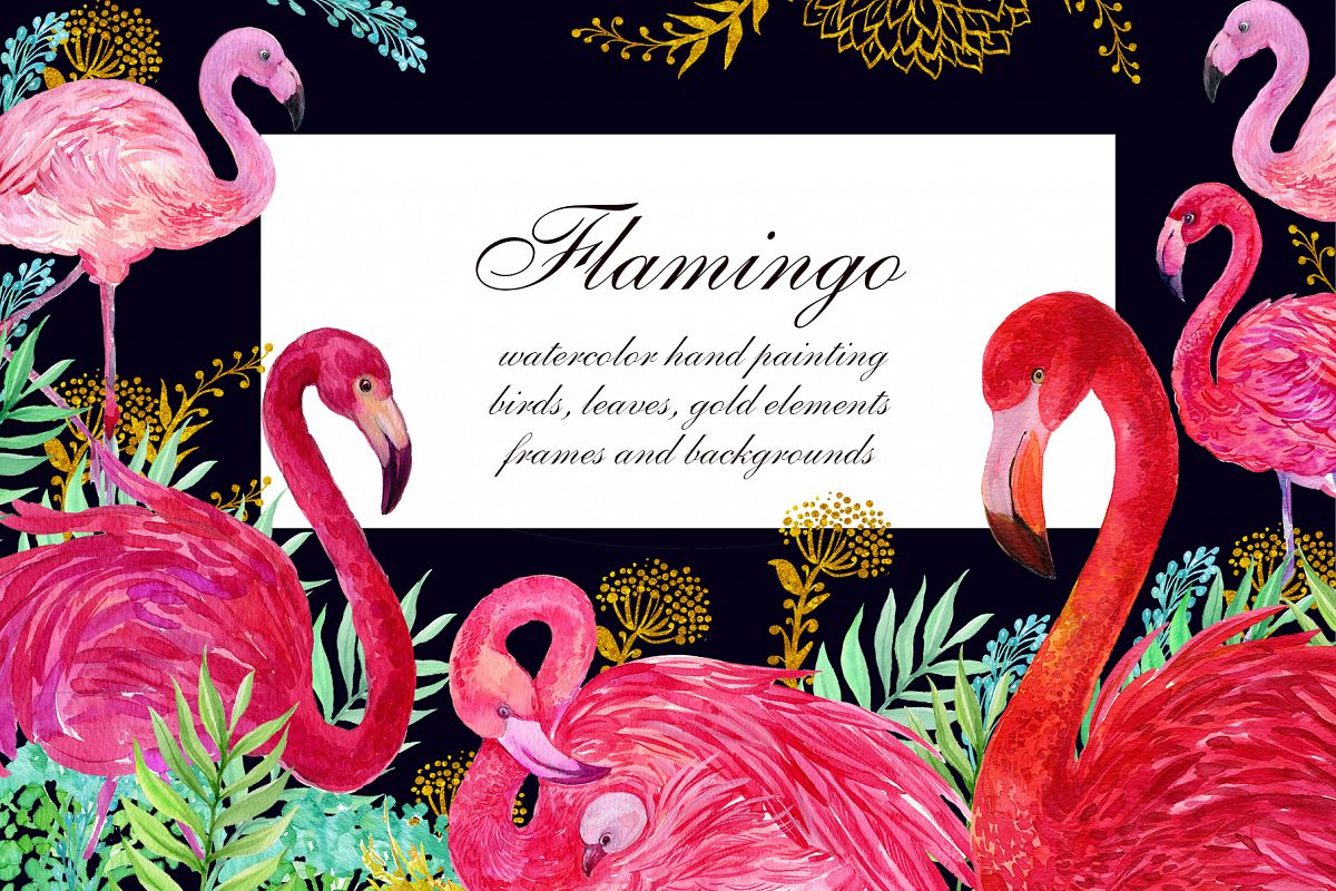Flamingo.birds clipart. Watercolor Illustration example image 1