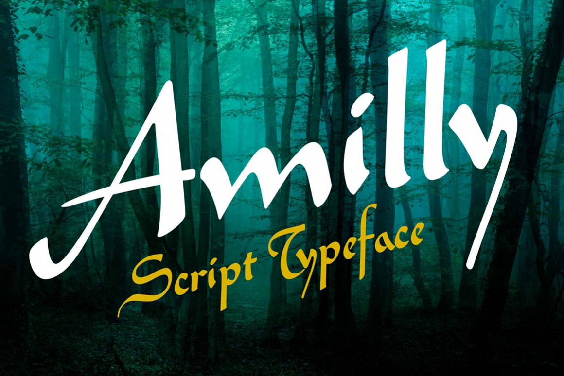 Amilly Script example image 1