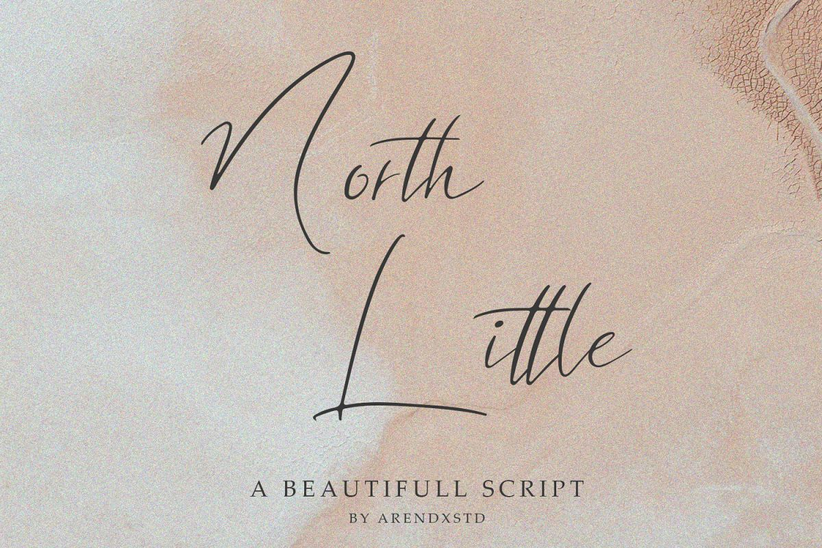 North Little Signature Font example image 1