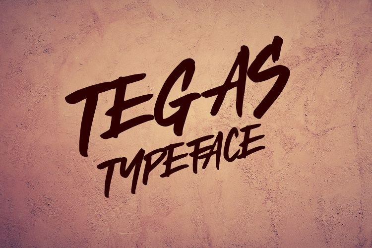 TEGAS TYPEFACE example image 1