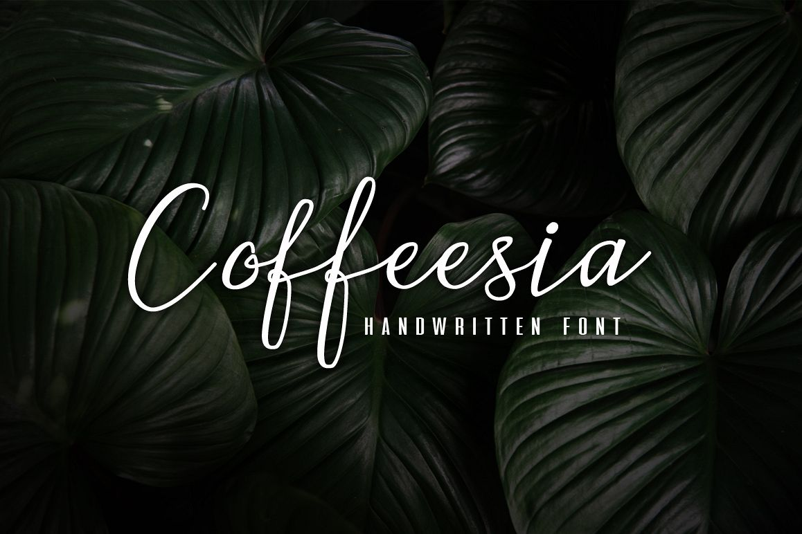Coffeesia example image 1